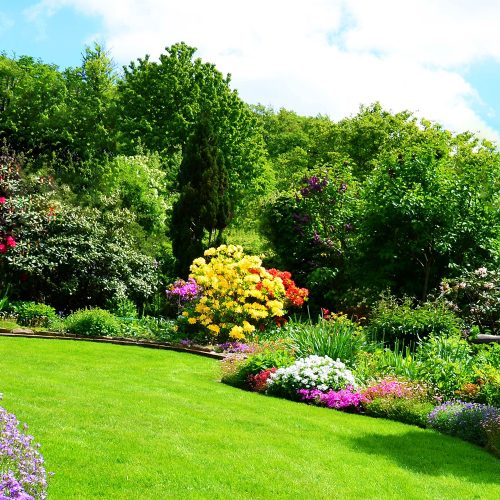 Shiny Bright Garden Services